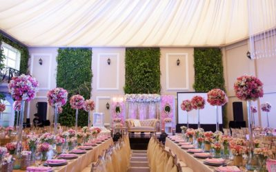 Elegance in Blush Pink and Gold